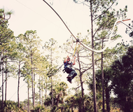 Zipline Roller Coaster