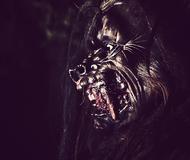 Werewolf Hunting