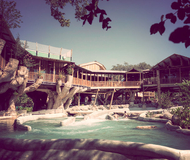 Treehaus Resort at Schlitterbahn