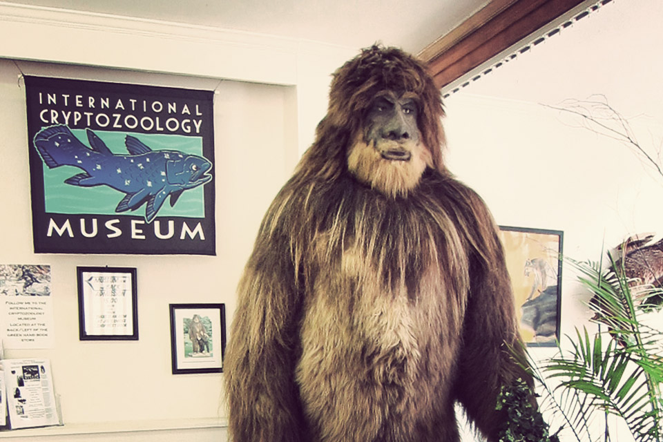 نتيجة بحث الصور عن ‪International Cryptozoology Museum‬‏