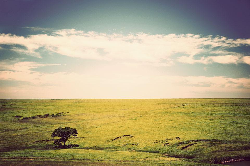 Prairie Preserve Prairie National Preserve